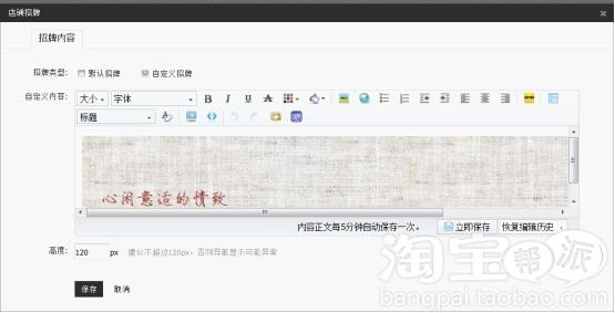 2013专业版新旺铺装修功能介绍 9